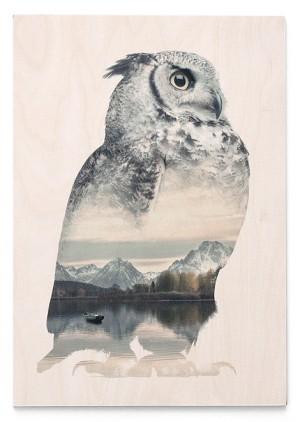 Ilustraciones que conjuntan animales y paisajes