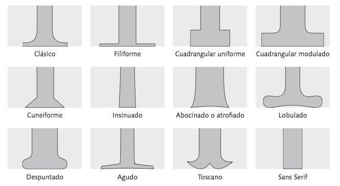Anatomía de las tipografías, conoce los detalles | paredro.com