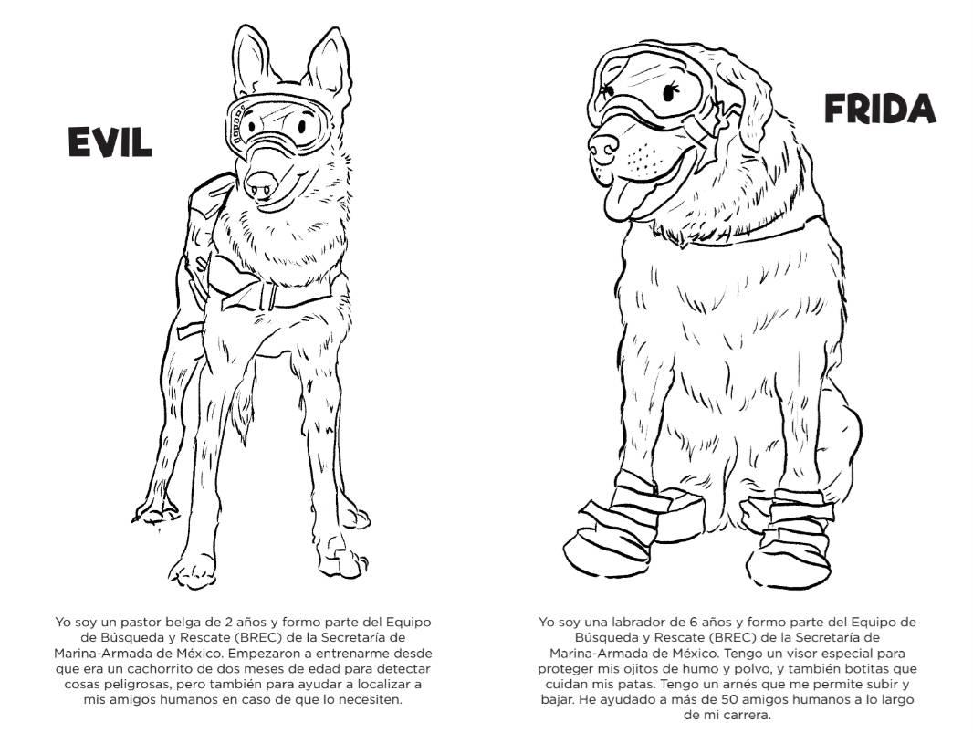 Frida Y Otros Perros Rescatistas En Libro Infantil Libre