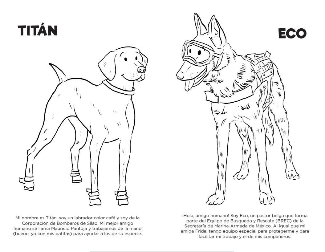 Frida Y Otros Perros Rescatistas En Libro Infantil Libre Para
