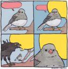 """""""No estudié 4 años de la carrera para que me pidan hacer memes"""". Mejor te dejamos 30 plantillas de los mejores memes, para que ya no te pidan diseñarlos."""