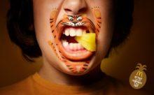 Los Pequeños Carnívoros de McDonald's | Imágenes para comer fruta