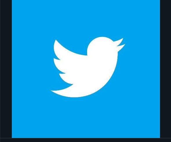 En sus inicios el logo de Twitter era simplemente una tipografía de otro color muy diferente al tono azul claro al que estamos acostumbrados.
