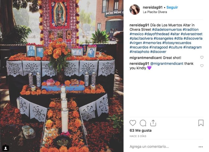 Estas son las Ofrendas de Día de Muertos más bonitas que la gente montó de acuerdo a las tradiciones mexicanas, incluso algunas las puedes visitar.