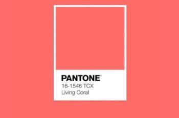 El Pantone 2019 será un coral vivo que tiene subtonos dorados y sin duda emerge una energía vibrante y llamativa, como en el mar.