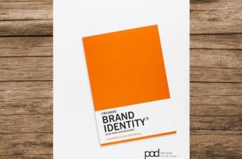Creando Brand Identity es un manual práctico que te presenta una metodología de principio a fin para crear la identidad visual que tu marca necesita.