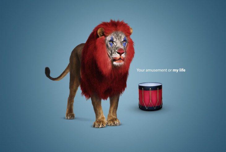 Estos carteles de la campaña de WWF en Egipto exponen algunas de las realidades sobre el maltrato animal de una manera relacionada a la cotidianidad humana.