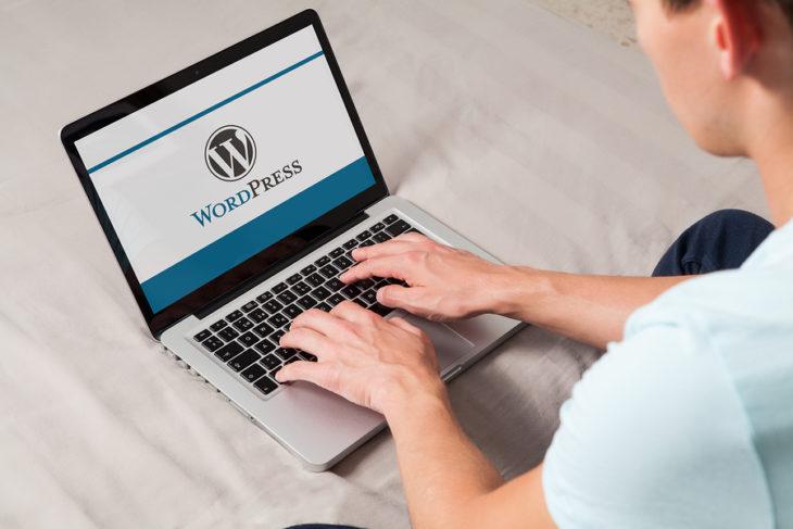 Algunas personas piensan que ambos sitios son lo mismo, pero existen diferencias entre wordpress.com y wordpress.org que los hace únicos en su tipo.
