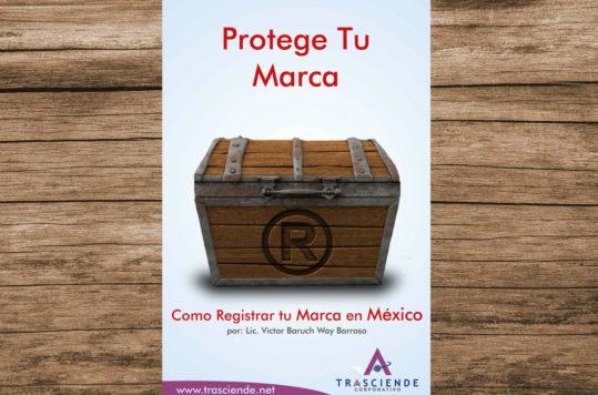 El libro Protege Tu Marca, Cómo Registrar tu Marca en México es una guía que ayuda a seguir los procedimientos solicitados por el IMPI.