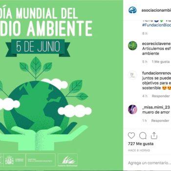 El Día Mundial del Medio Ambiente tiene el propósito de sensibilizar a la población en relación a temas ambientales, estas ilustraciones son un apoyo visual.